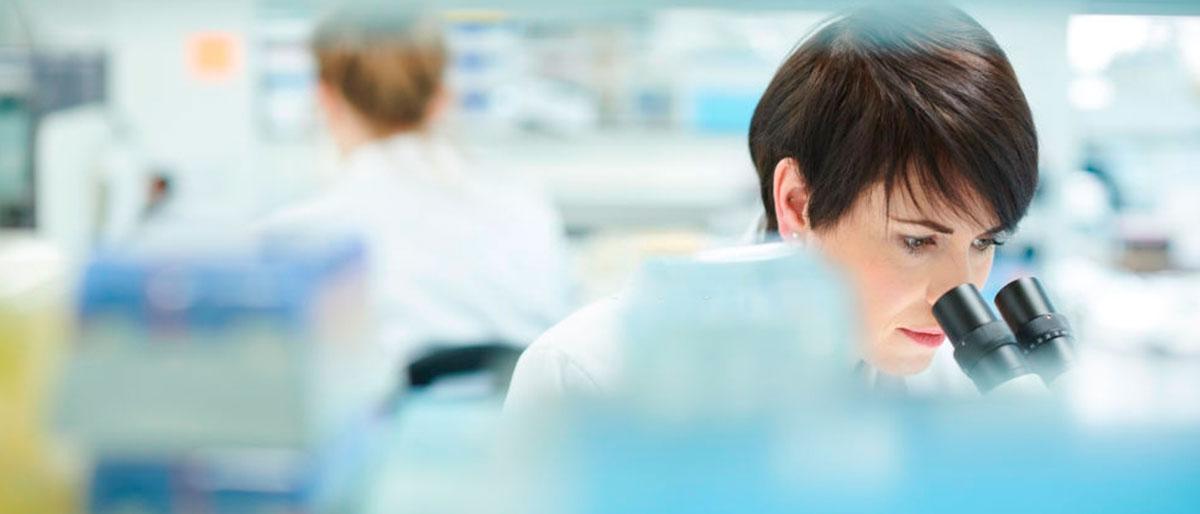 Exames toxicoloógicos